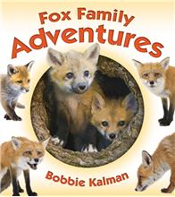 Fox Family Adventures - HC