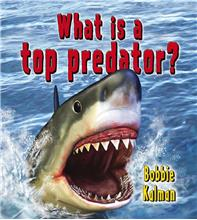 What is a top predator? - PB