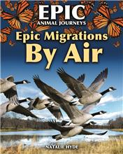 Epic Migrations by Air - HC