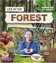 Life in the Forest - PB