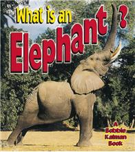 What is an Elephant? - PB